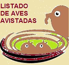 LISTADO.png